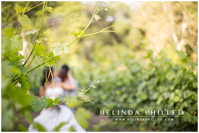 romantic moment shared by a bride and groom in temecula vinyeard