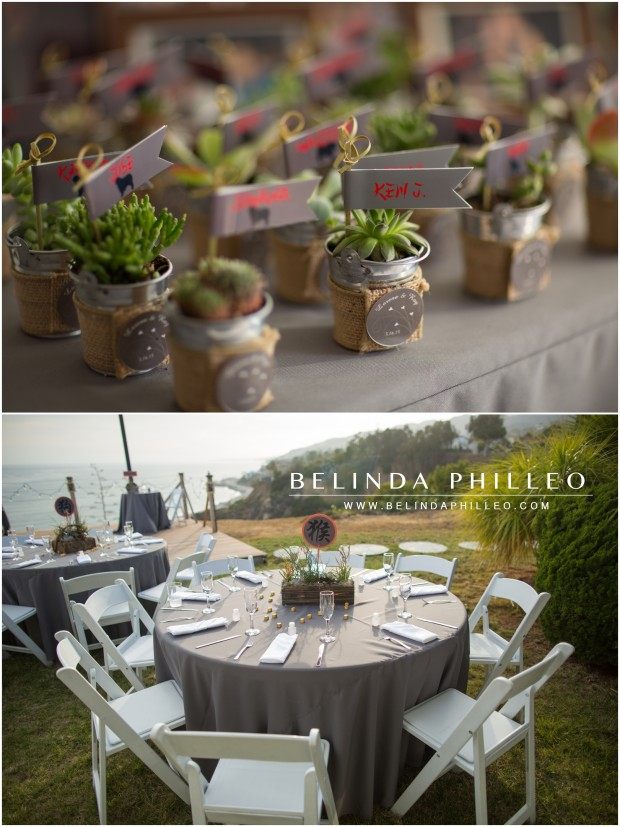 succulents as guest gifts | pacific palisades wedding