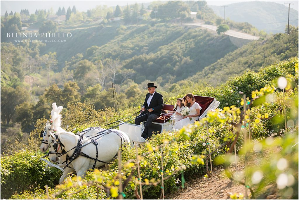 bride arrives to her ceremony on a horse drawn carriage at Serendipity Gardens in Oak Glen, California